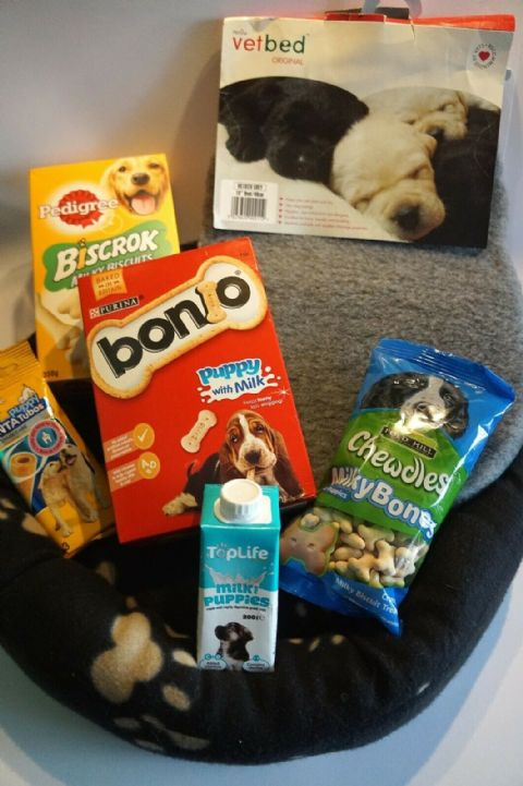PUPPY STARTER SET WITH VETBED, PAW PRINT DONUT BED, PUPPY TREATS AND PUPPY MILK